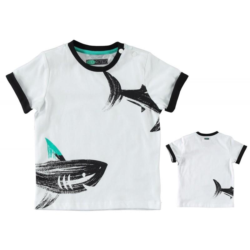 Sarabanda 0U517 T-shirt bambino