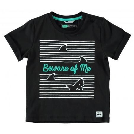 Sarabanda 0U515 T-shirt bambino