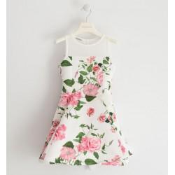 Sarabanda 0J430 Girl Dress